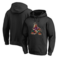 Arizona Coyotes Fanatics Branded Team Alternate Pullover Hoodie – Black